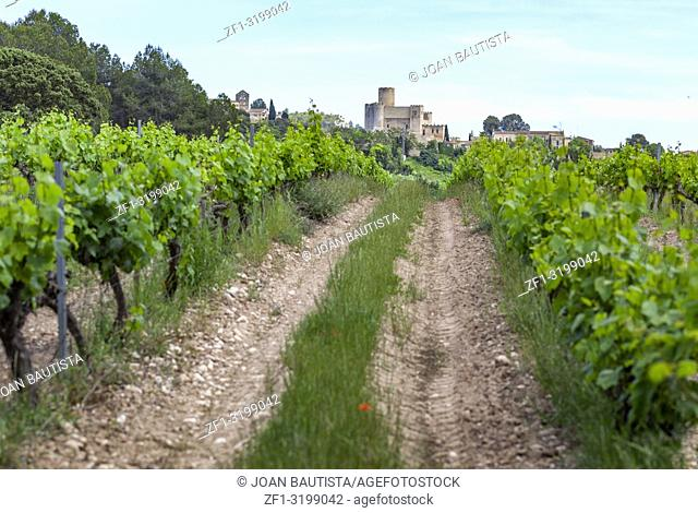 Village view and vineyards in penedes wine area,Castellet i la Gornal,Catalonia. Spain