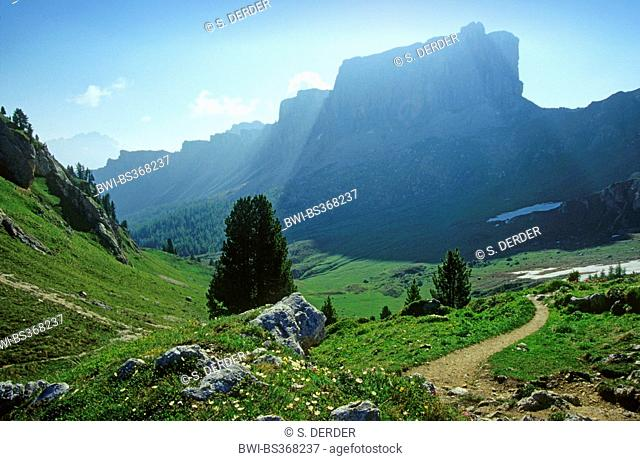 view to alpine pasture and Monte Formin, Italy, South Tyrol, Dolomiten , Pass Giau