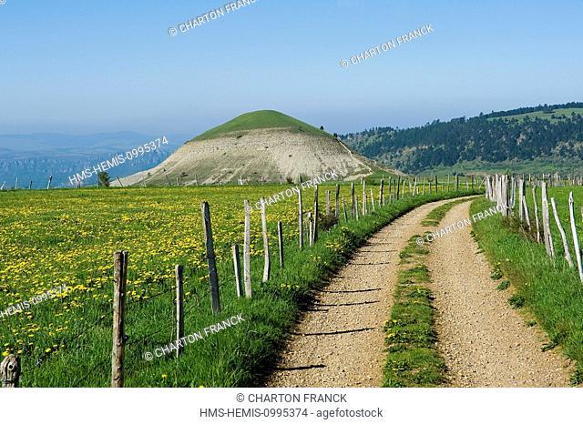 France, Lozere, Les Bondons, the puech or hills detrital