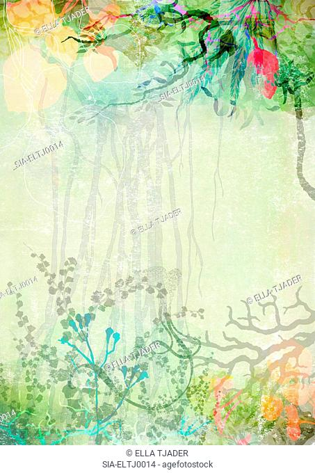 Layers of plants and lianas