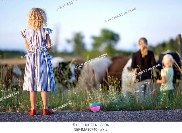 Three girls looking at cows on pasture
