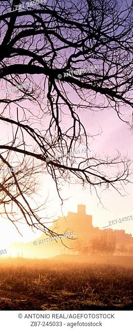 Castle. Almansa, Albacete province. Spain