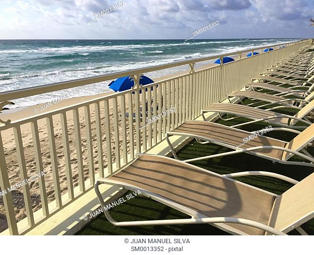 Lounchairs in a row in front of ocean, Lantana, Florida, USA