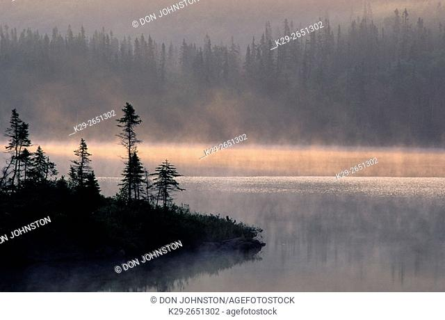 Silhouetted spruce trees on peninsula in misty lake at dawn, near Rossport, Ontario, Canada