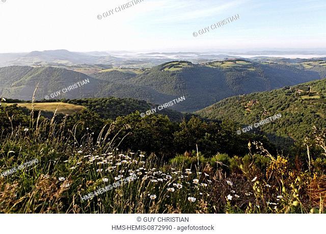 France, Aveyron, Tarn valley above the Truel, Levezou