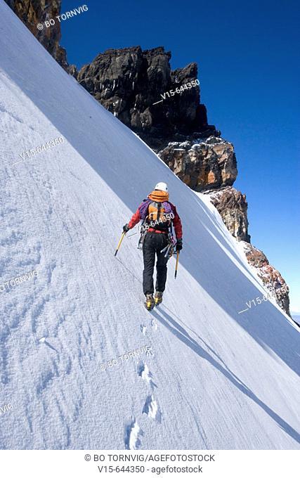Ice climbing on Mount Ruapehu, Mountaineering. New Zealand