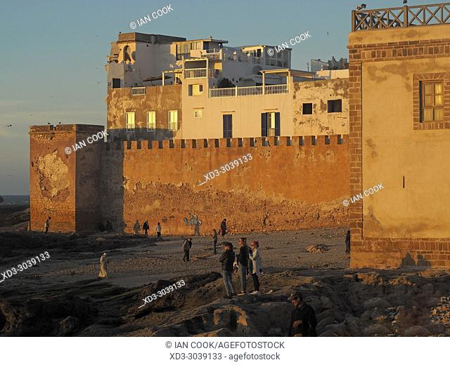 medina viewed from fishing port, Essaouira, Morocco