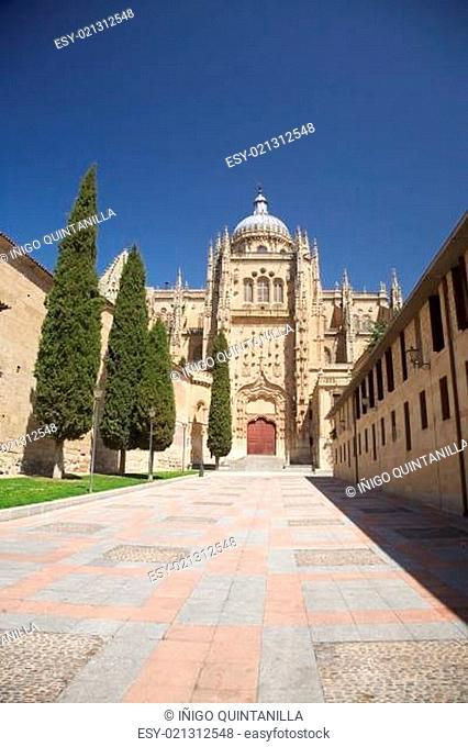pedestrian street to Salamanca cathedral