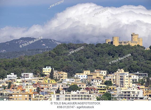 castillo de Bellver sobre el barrio del Terreno, Mallorca, balearic islands, Spain
