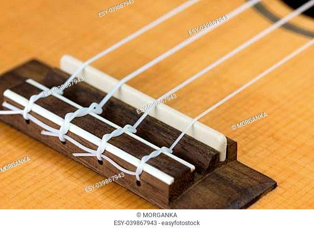 Closeup of ukulele hawaiian guitar body. Focus on bridge