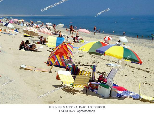 Cape Cod National Seashore beach