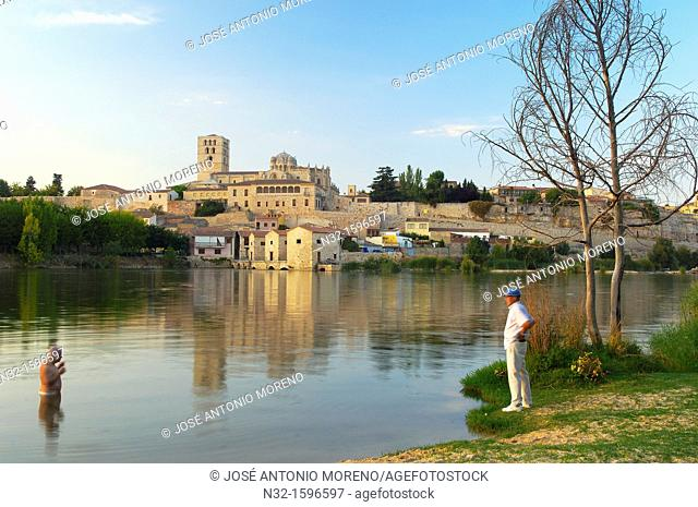 Cathedral and Duero river, Zamora, Silver Route, Castilla-Leon, Spain