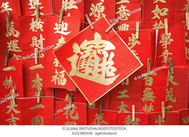 Hand Painted Chinese Lunar New Year Decorations