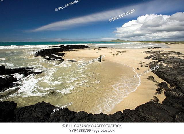 Pristine Beach on Isabela Island - Galapagos Islands, Ecuador