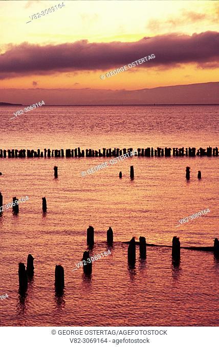 Pilings sunrise on lower Columbia River, Pacific County, Washington