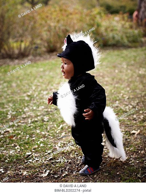 African American baby in skunk costume