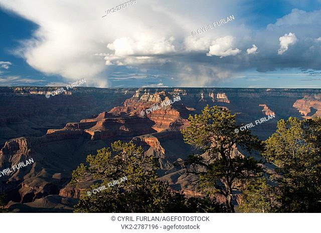 Late afternoon Yaki Point, South Rim Grand Canyon Arizona
