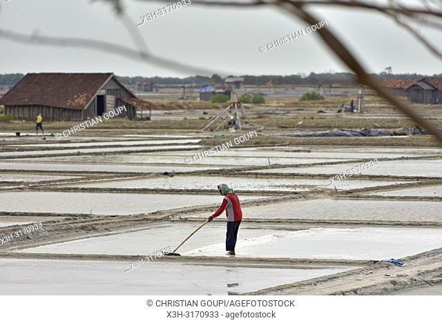 salt fields near Lasem, Java island, Indonesia, Southeast Asia