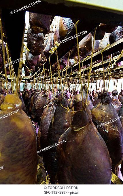 Hams hanging up to dry