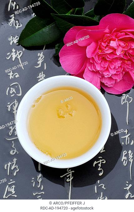 Cup of tea, Camellia blossom and japanese characters, Camellia japonica, Theaceae