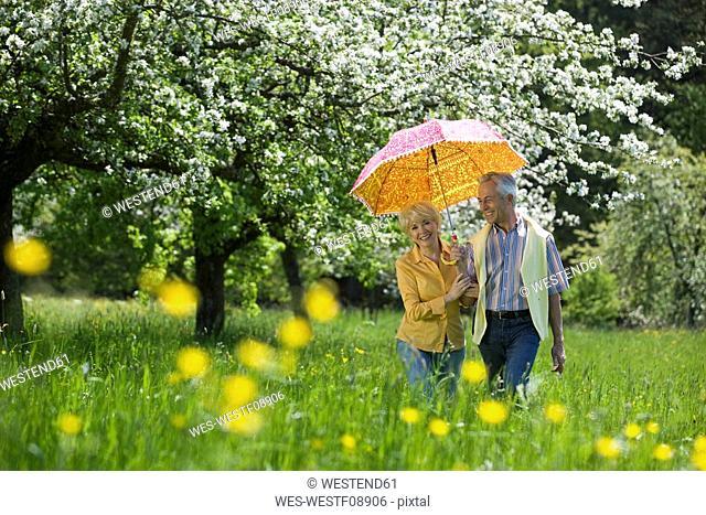 Germany, Baden Württemberg, Tübingen, Senior couple walking through meadow with umbrella