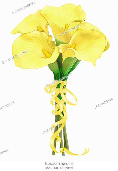 A bouquet of yellow calla lilies