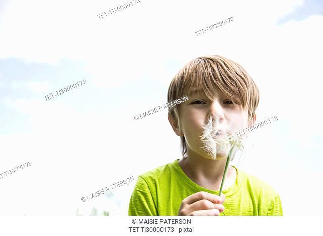 Boy (6-7) blowing dandelion