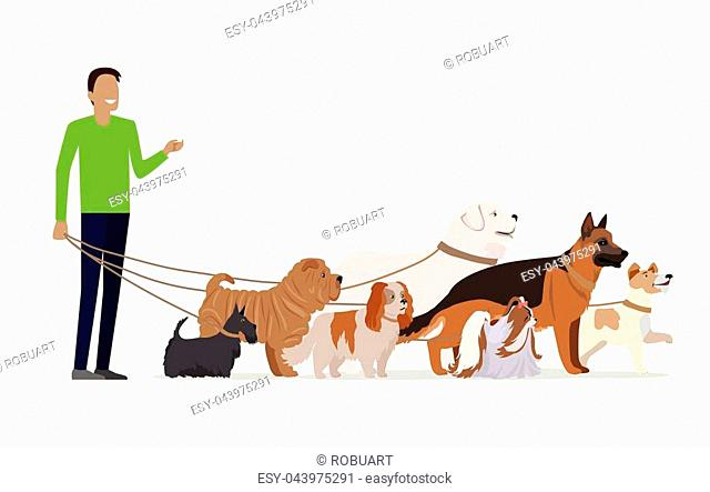 Professional dog walking banner. Young man walking with group of different breeds dogs on white background. Dog service. Vector illustration in flat style