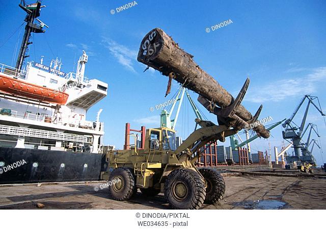Import of timber, Kandla. Kutch, Gujarat, India
