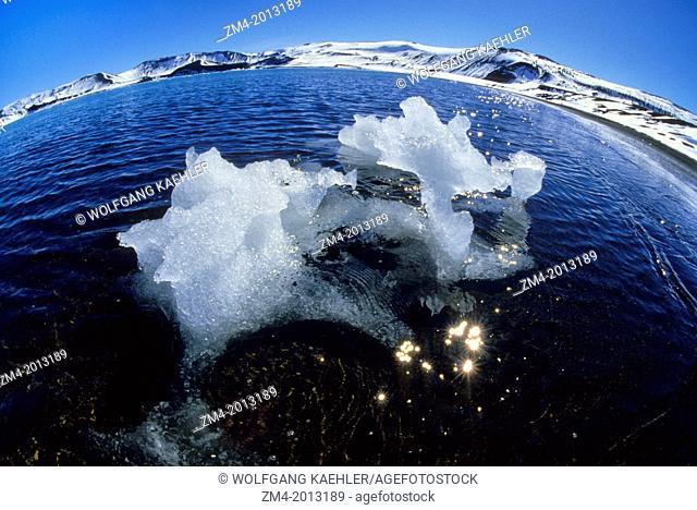 ANTARCTICA, DECEPTION ISLAND, BIZARRE LOOKING PIECE OF ICE PHOTOGRAPHED WITH FISHEYE LENS