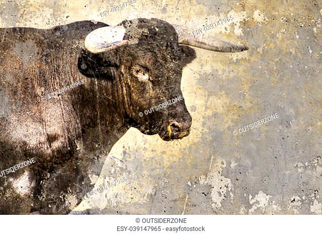 Artistic image with background texture bullfight