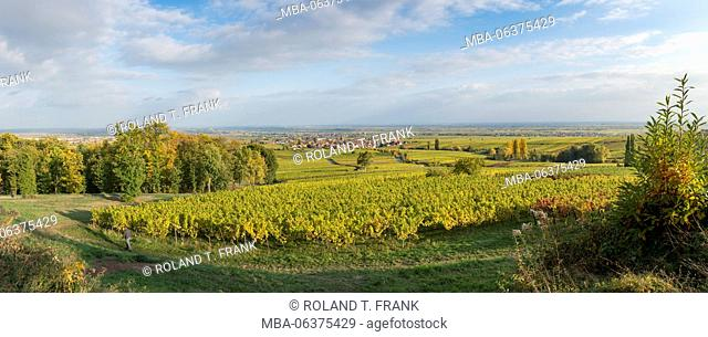 Germany, Rhineland-Palatinate, view from the villa Ludwigshöhe to Rhodt