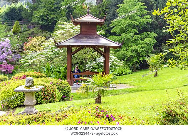 ENNISKERRY, CO. WICKLOW, IRELAND: Roundabout of the Japanese garden in the Powerscourt gardens