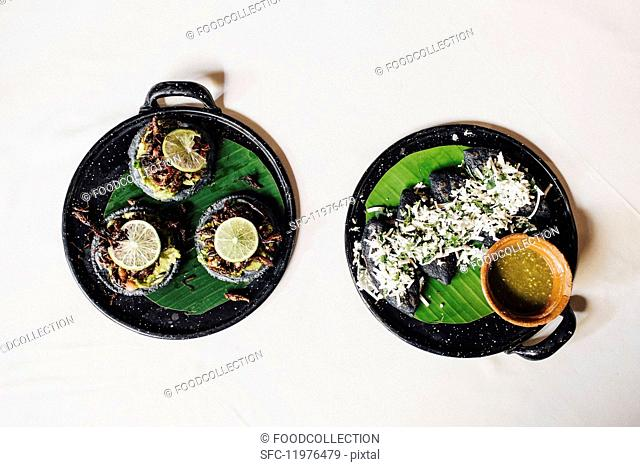 Fried grasshopper tacos and huitlacoche tlacoyos with fresh tomatillos (Mexico)