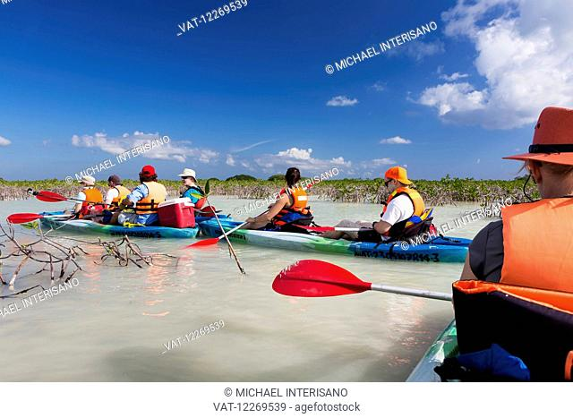Group of double kayakers floating in magrove lagoon with blue sky and clouds; Tulum, Quintana Roo, Mexico