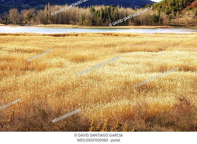 Spain, Cuenca Province, Serrania de Cuenca Natural Park, Una Lagoon