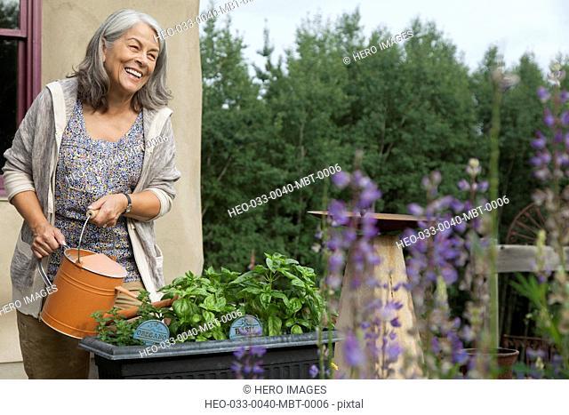 senior woman watering outdoor herb garden on patio