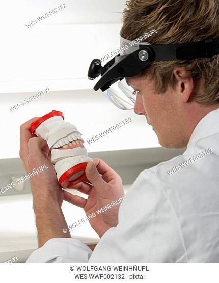 Dentist looking at dentures in dental laboratory