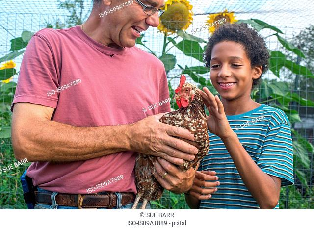 Mature farmer and boy petting hen on farm