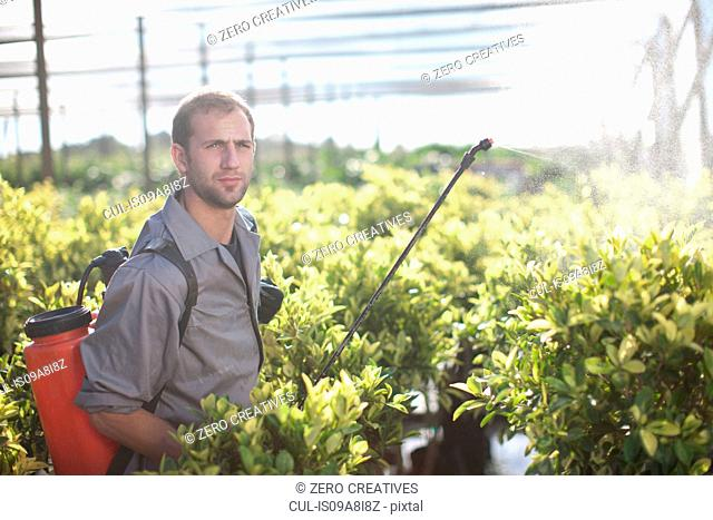 Young man spraying pesticide in plant nursery