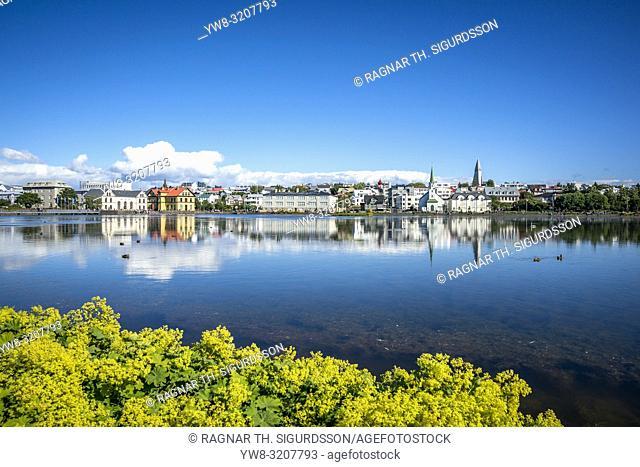 The Reykjavik Pond, Gay Pride, Reykjavik, Iceland