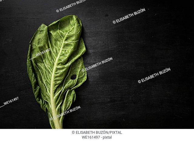 Picture about vegetables