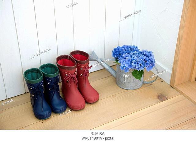 Rain boots and Hydrangea