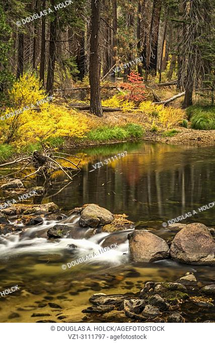 Fall colors and reflection on Merced River, Yosemite NP, USA