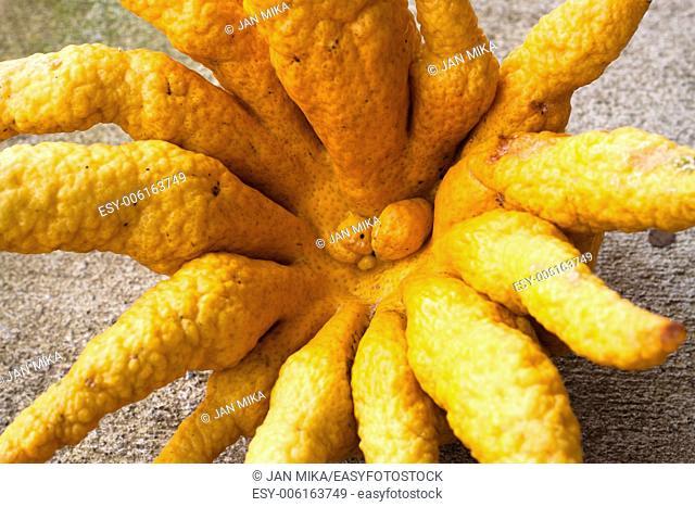 Buddha's hand citron fruit