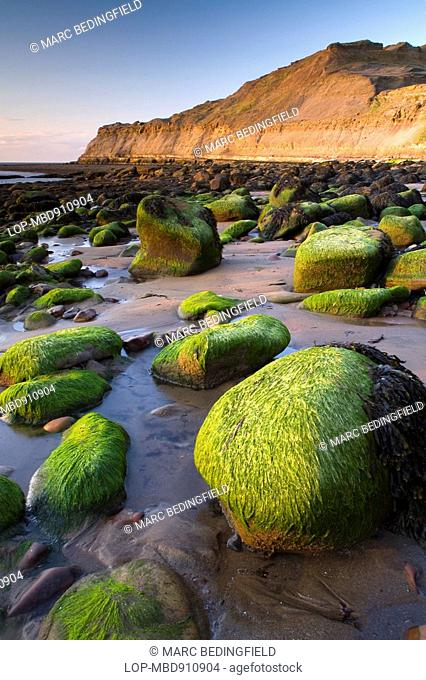 England, North Yorkshire, Runswick Bay, Runswick is located on the east coast within the North Yorkshire Moors. Runswick Bay was recently voted the best place...