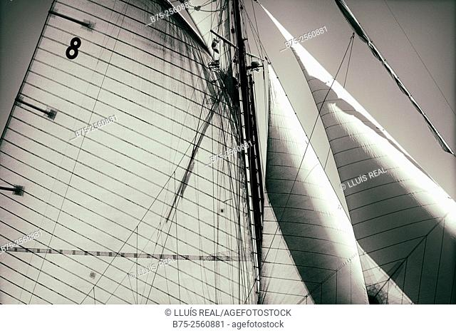 View of the rigging and mast of a classic boat. Ropes, jib, and gaff sail. Port Mahon, Menorca, Biosphere Reserve, Balearic Islands, Spain, Europe