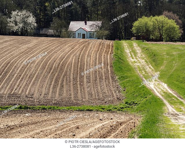 Poland. Podlasie region. Spring. Field, house, road
