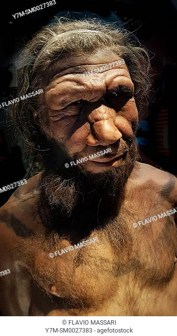 Human evolution gallery . Model of male Homo neanderthalensis, Natural History Museum, London, England, UK. This image could have imperfections as itâ