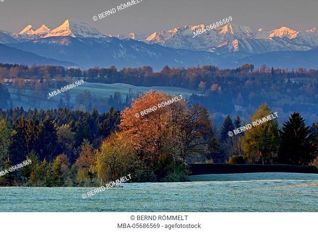 Germany, Bavaria, Upper Bavaria, Tölzer country, view at the Karwendelgebirge, Karwendel